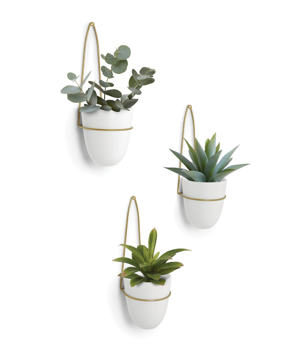 3 Set Planter In 2020 Small Indoor Plants Wall Planter Planters