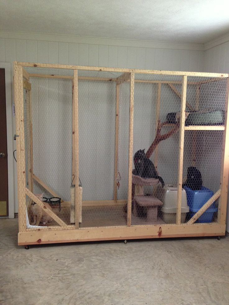 Cat Cages New Homes And Cats On Pinterest Cat Stuff