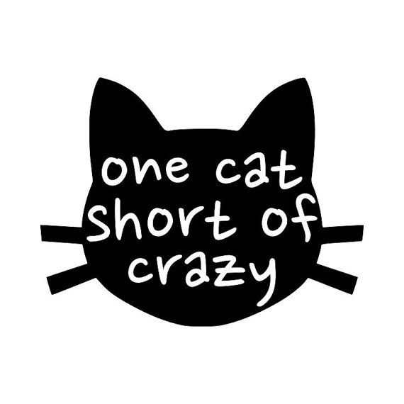 One Cat Short Of Crazy Cat Lady Vinyl Decal Great For Yeti And - Vinyl decal cat pinterest