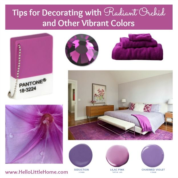 Tips For Decorating With Radiant Orchid Other Vibrant Colors Hello Little Home
