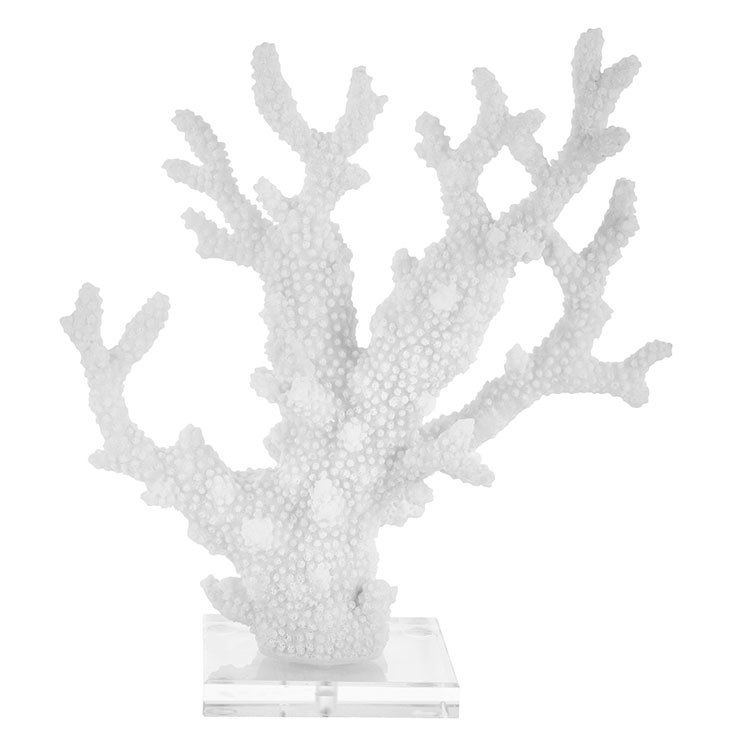 13 Coral Sculpture White Coral Sculpture
