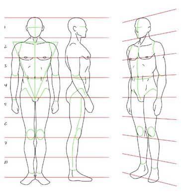 Pin De Alkemist En Como Dibujar Manga Referencias Cuerpo Humano Dibujo Bocetos Del Cuerpo Humano Dibujos Para Principiantes