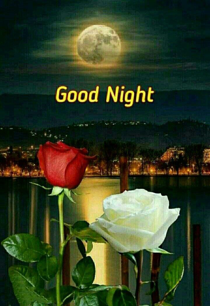 Pin By Carol Stegink On Good Night Nature Good Night Image Good Night Qoutes Romantic Good Night