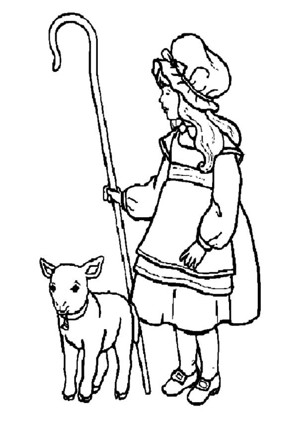 Mary Had A Little Lamb And She Shepherds It