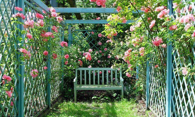 Ideen für den kleinen Garten - ideen fur den kleinen garten