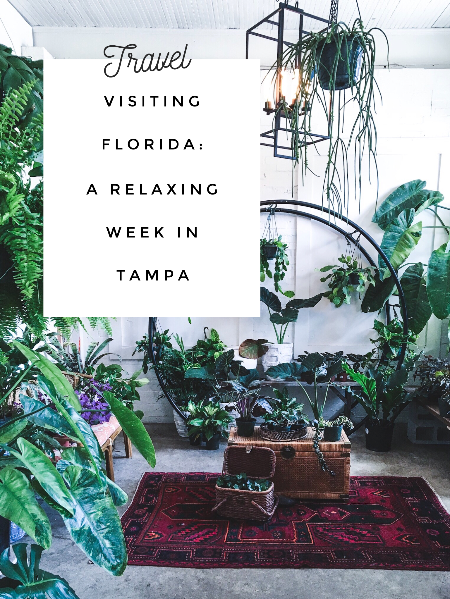 Visiting Florida A Relaxing Week In Tampa With Images Visit