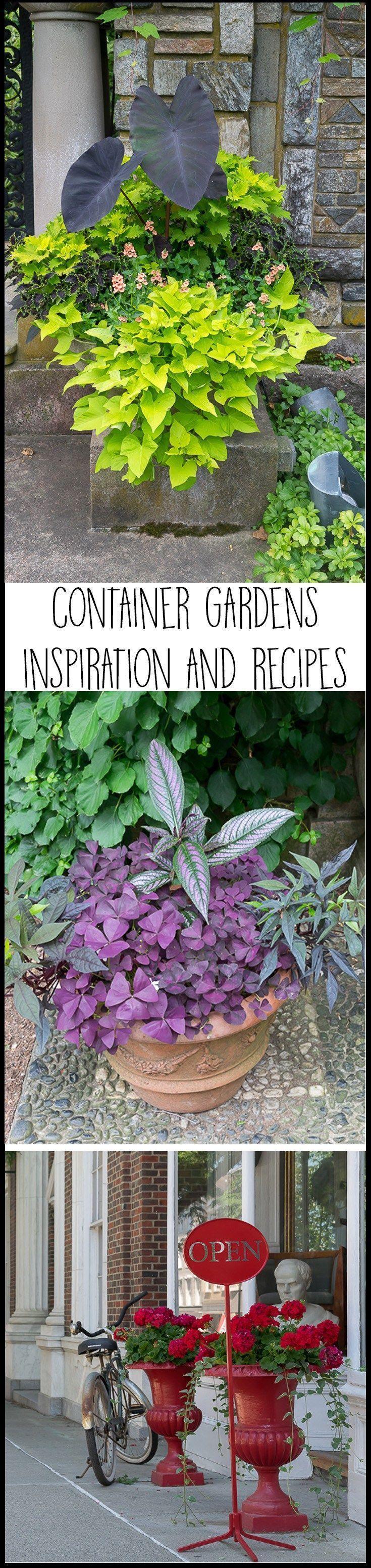 Container Garden Ideas: Inspiration and Recipes #2 #shadecontainergardenideas