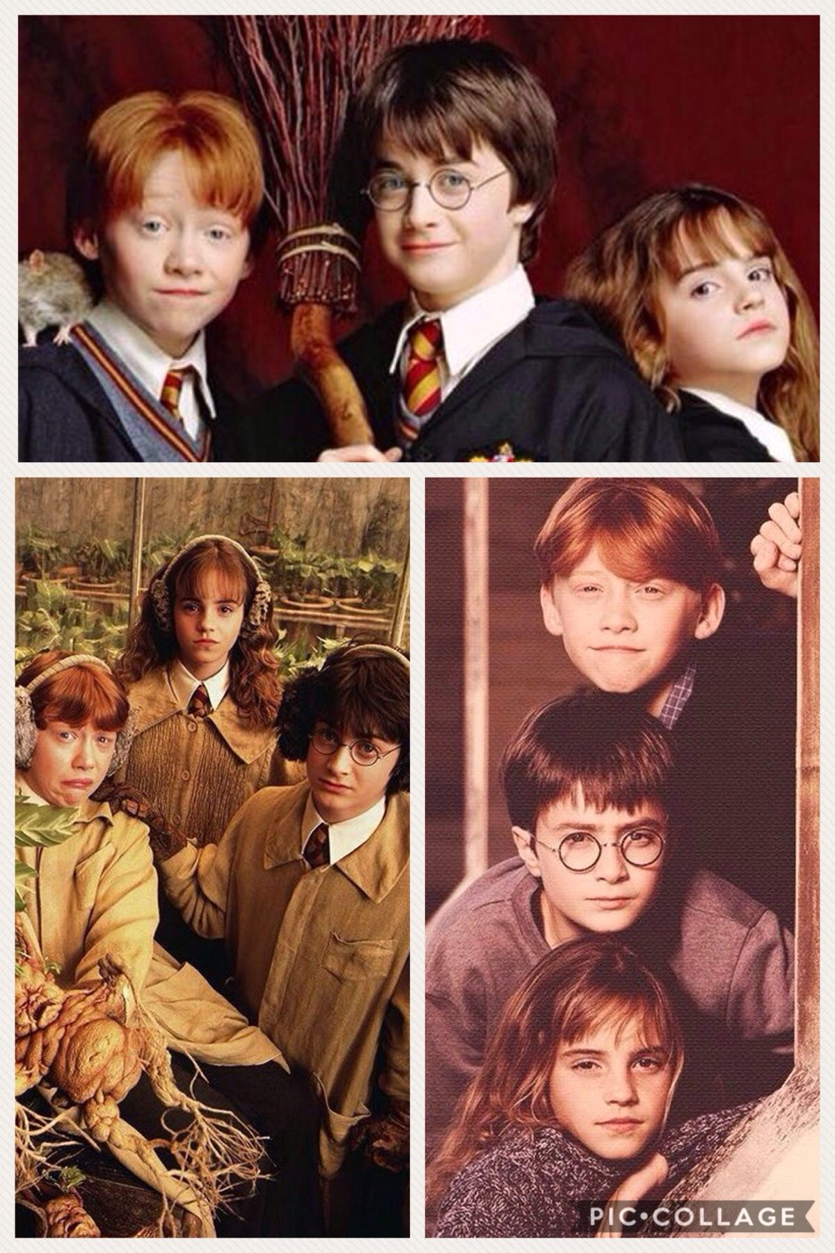 The Golden Trio Collage Noble Collection Harry Potter Harry Potter Characters Harry Potter Movies
