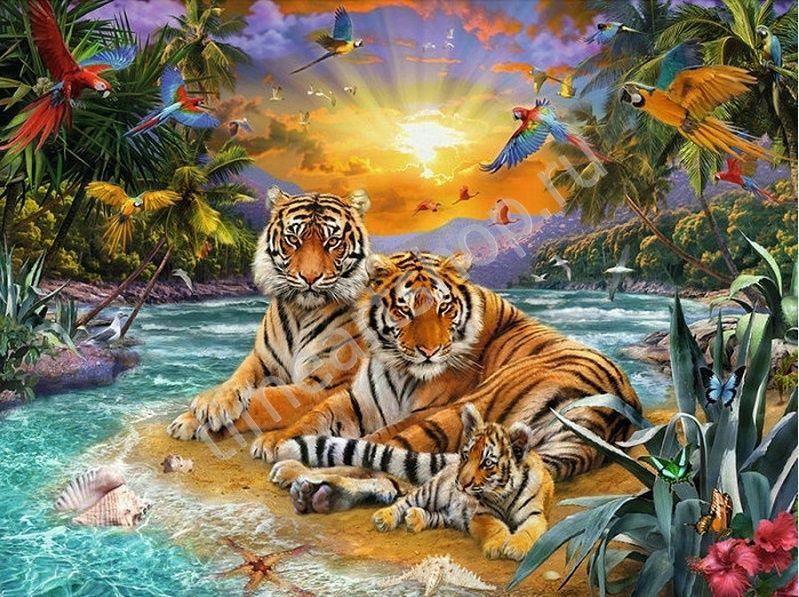 Семья тигров на закате, картина-раскраска по номерам ...