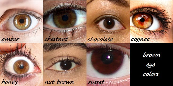 This Brown Eye Color Chart Is A Great