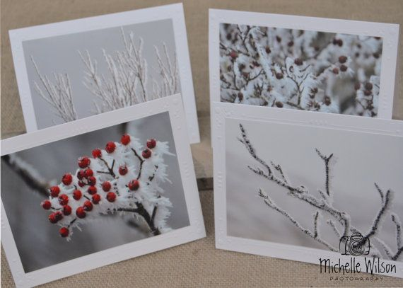 Winter Frost Card Pack...4 cards... Frozen Berries, Freeze, Red Berry and Frozen Branches...Fine Art Photography Greeting Cards