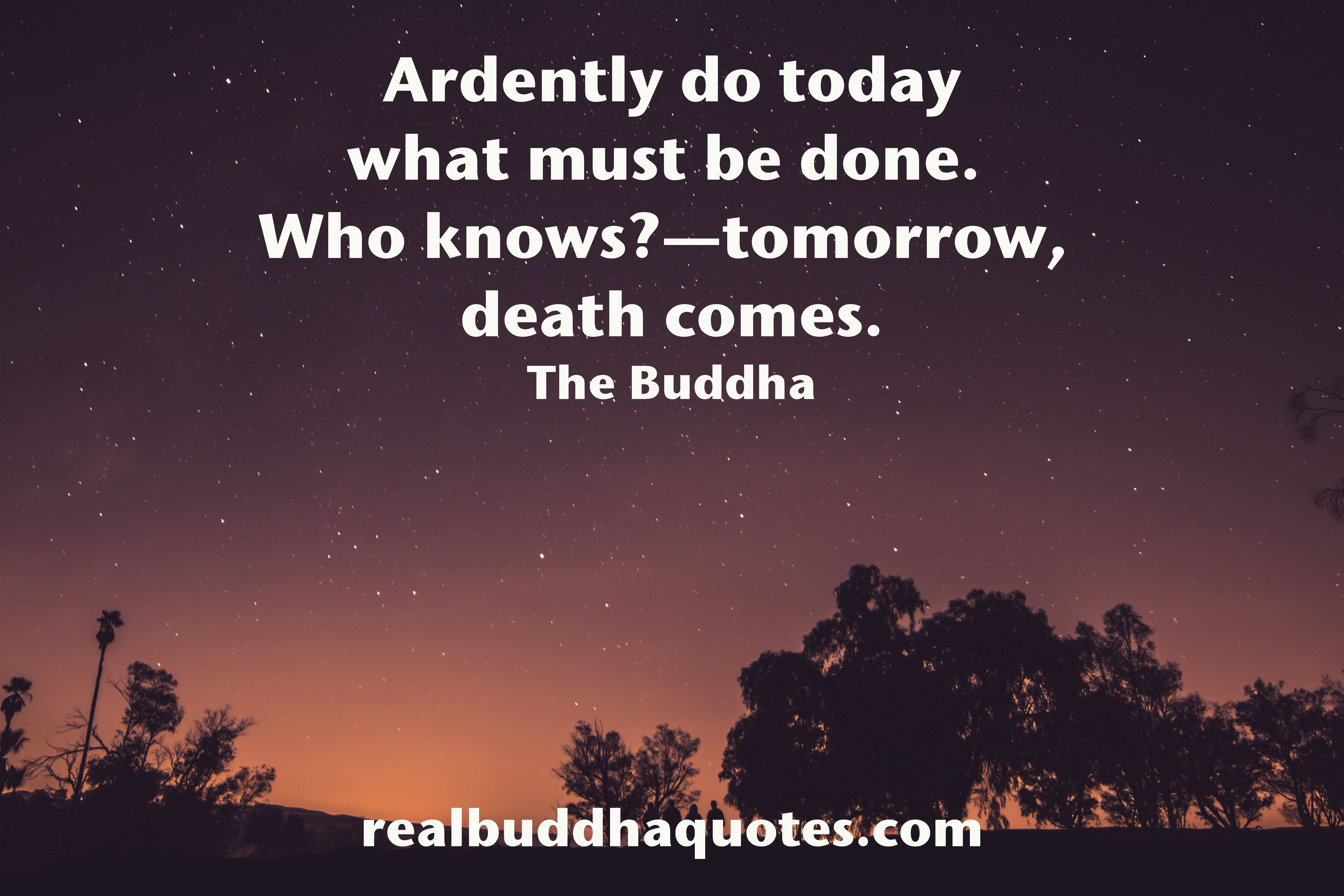 Real Buddha Quotes Real Buddha Quotes  Verified Quotes From The Buddhist Scriptures