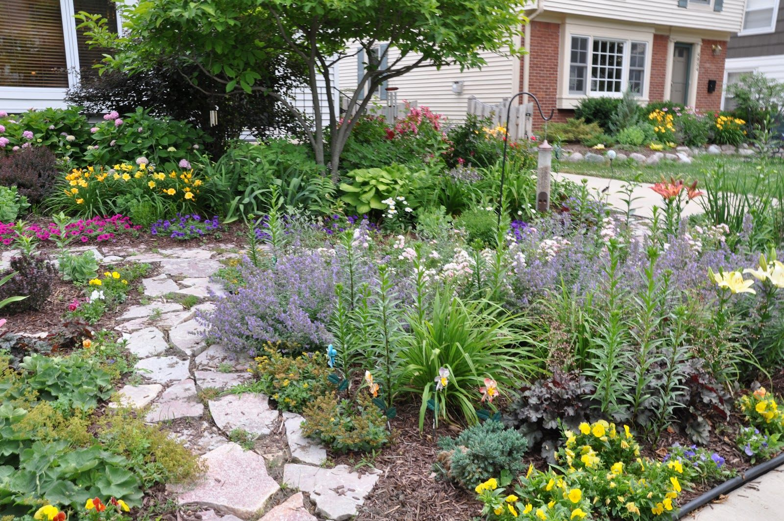 Details of the walkway landscaping lawn and outdoors for Front yard plants