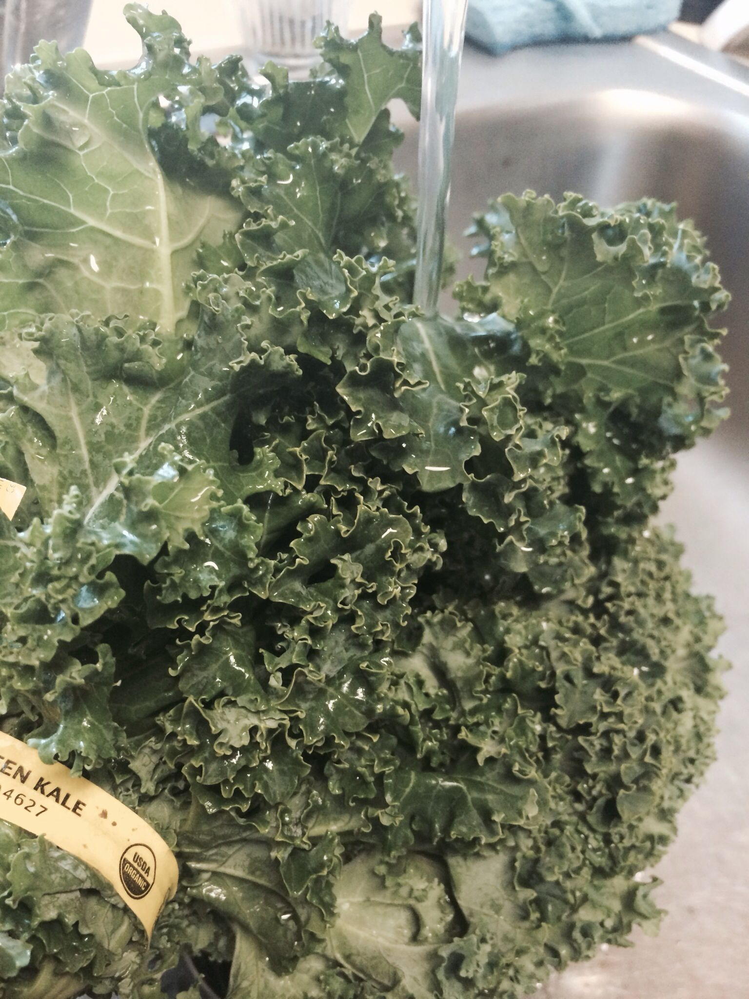 What to do with excess kale
