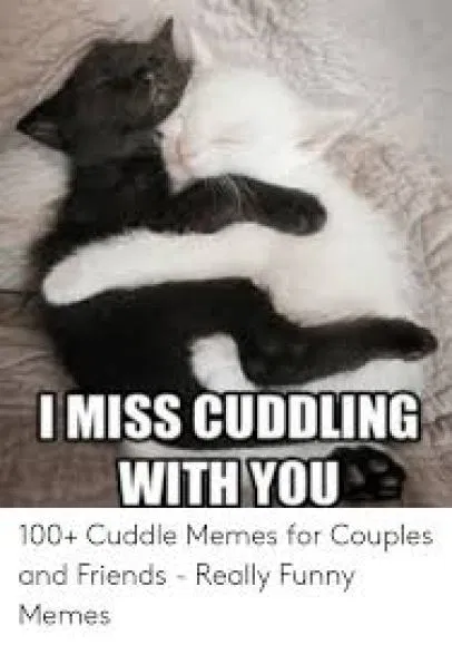 Top Romantic Cuddle Memes And Quotes For Him Her In 2019 Cuddling Cuddling Meme Really Funny Memes