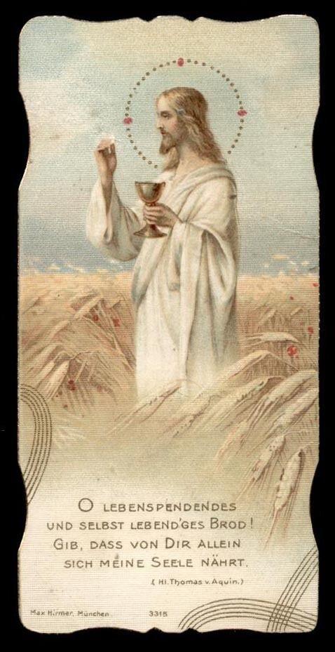 O living bread, to mortals life supplying! Make Thou my soul henceforth on Thee to live.—Hymn of St. Thomas Aquinas