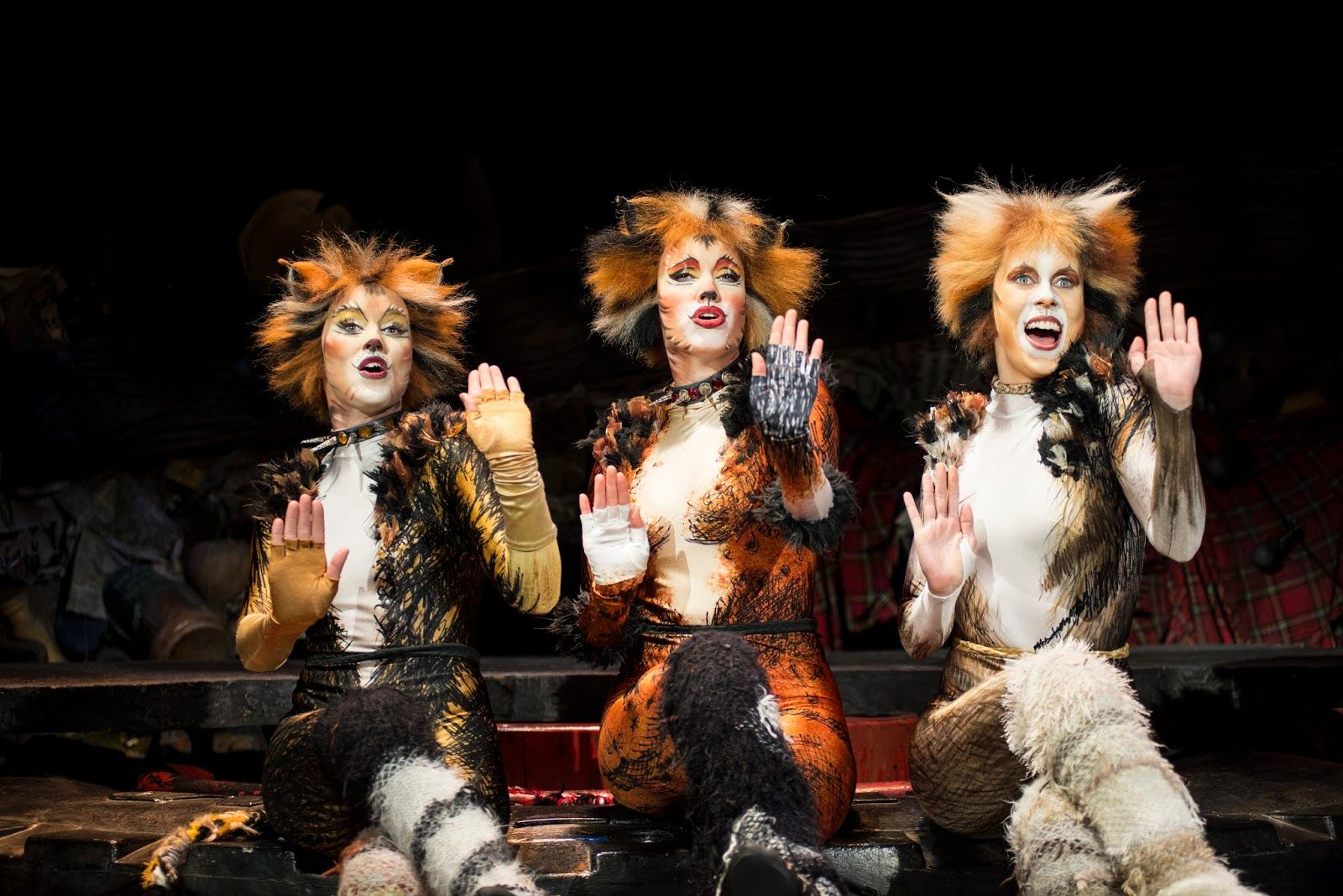 West End Frame Production images released for Cats in