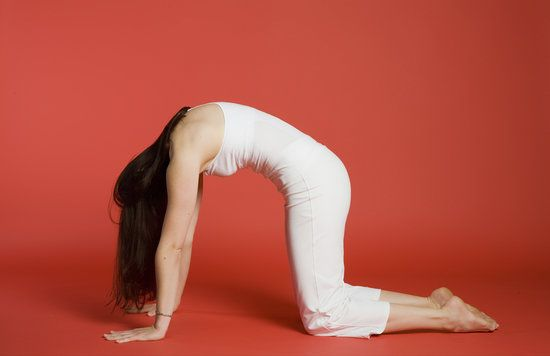 """Cat-cow tilts can be an effective headache reliever, in addition to opening up the back and stretching the spine. Start with hands and knees on the floor in a tabletop position with a neutral spine. On the inhale, round the spine and curve up into your cat pose (pictured above). On the exhale, arch the back and lift the chest to come into a cow pose. Repeat three to five times, focusing on the breath.""""It also helps bring the neck back into the position over the spine -- people tend to…"""