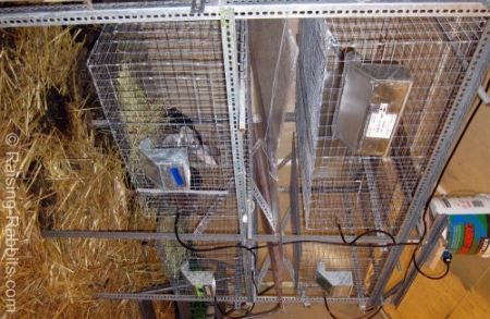 Rabbit cages free plans for hutches runs and cages from for Pvc rabbit cage