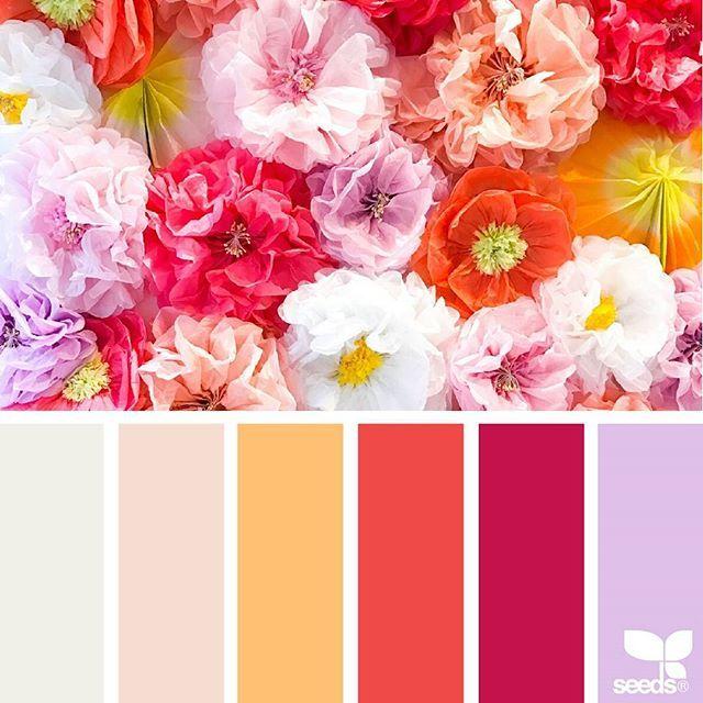 Festive Flora | Flora, Inspiration and Color inspiration