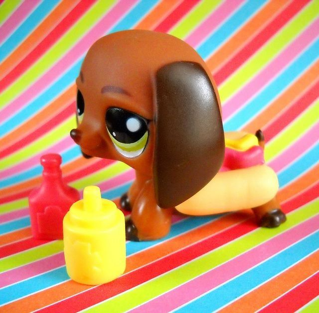 Its A Weenier Dog Dressed As A Hot Dog Lps Pinterest Dog