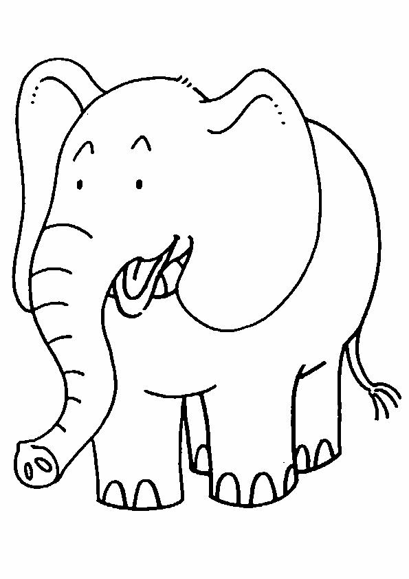 Olifant Elephant Coloring Page Animal Coloring Pages Zoo Animal Coloring Pages
