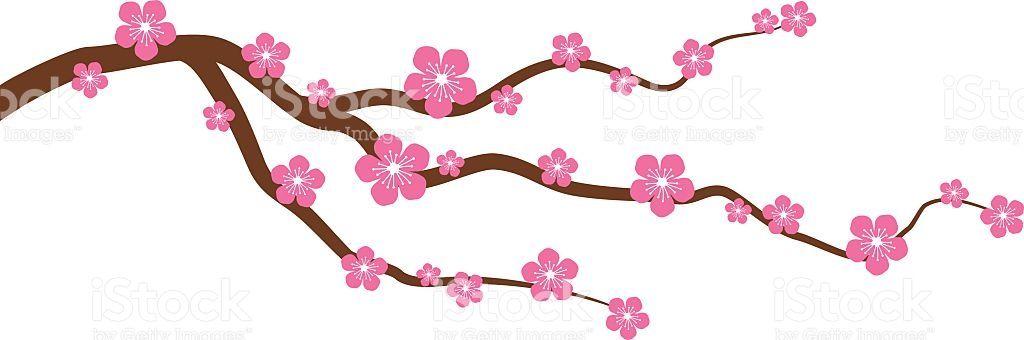 A Cherry Blossom Peach Blossom Branch With Flowers Cherry Blossom Tree Blossom Trees Cherry Blossom