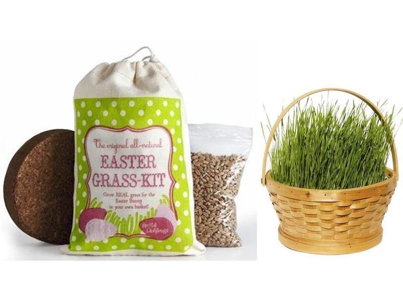 6 green alternatives to plastic easter basket grass filler easter 6 green alternatives to plastic easter basket grass filler negle Image collections