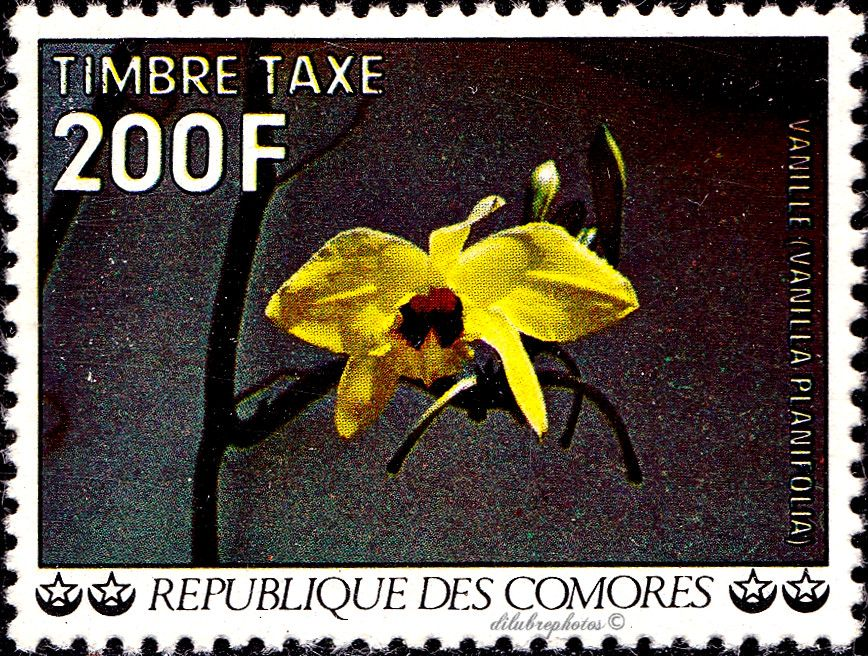Comores Republic.  AIR POST SEMI-POSTAL STAMP.  VANILLA.  Scott J16 D3, Issued 1977 Nov 19, Litho., Perf. 13 1/2, 200. /ldb.