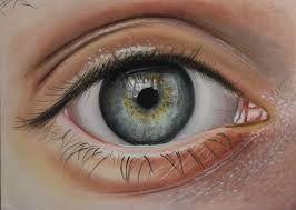 amazing eyes drawing google search eyes pinterest