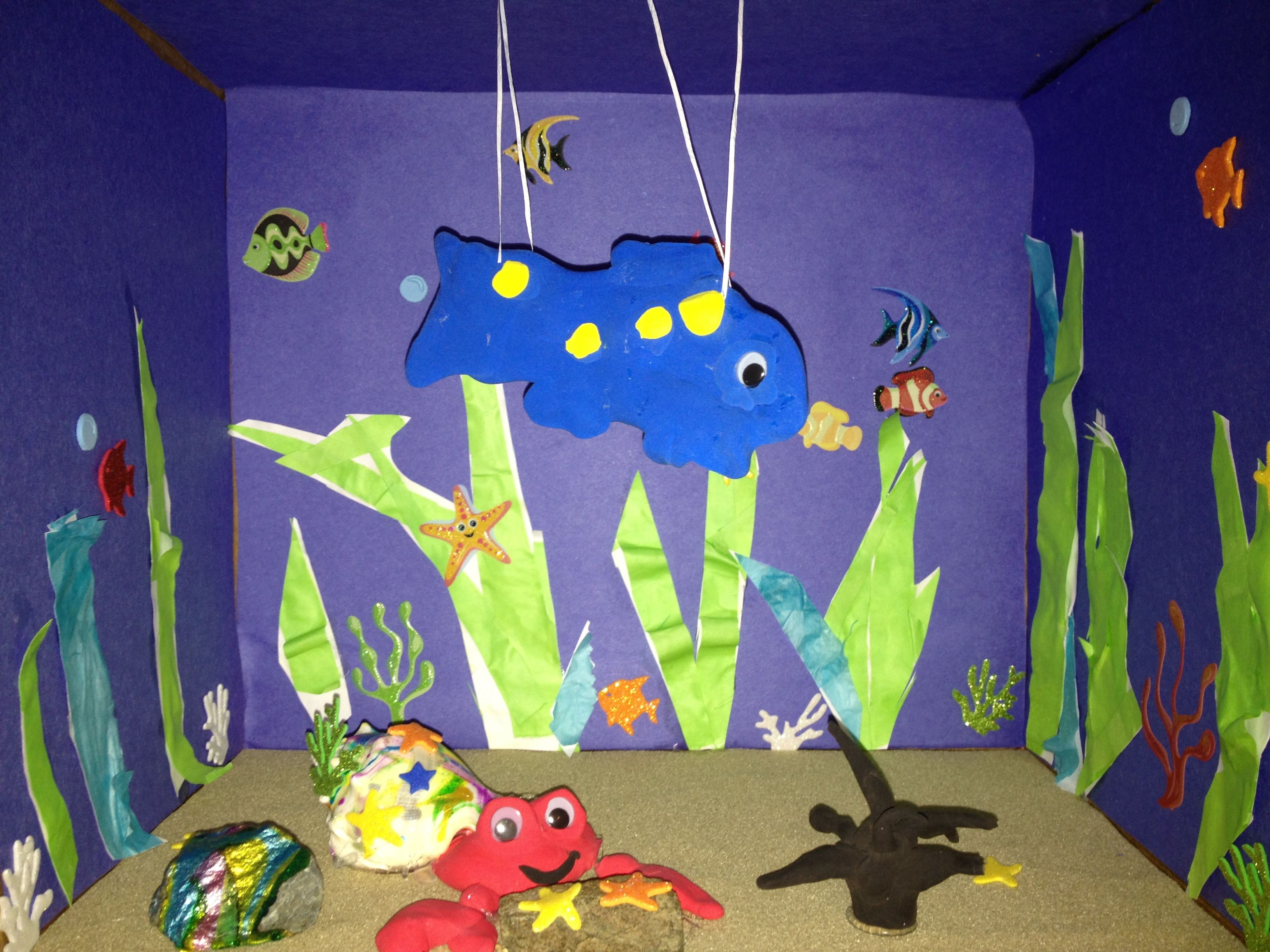 Eric Carle Diorama A House For Hermit Crab