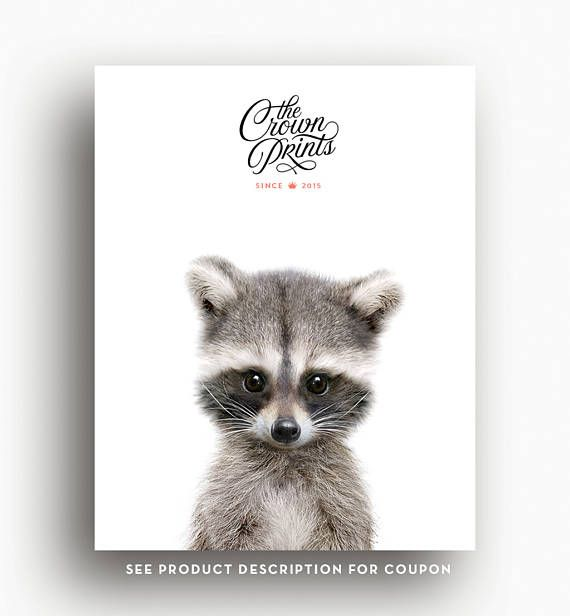 Raccoon print, Woodland animals, Nursery decor, Animal art, Baby ...