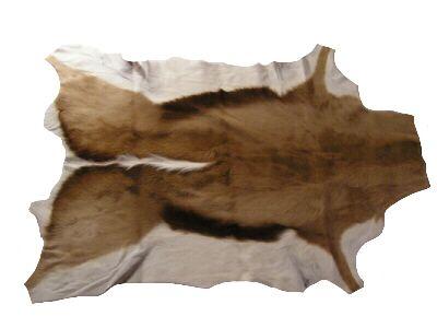Animal Skin Rugs Roselawnlutheran