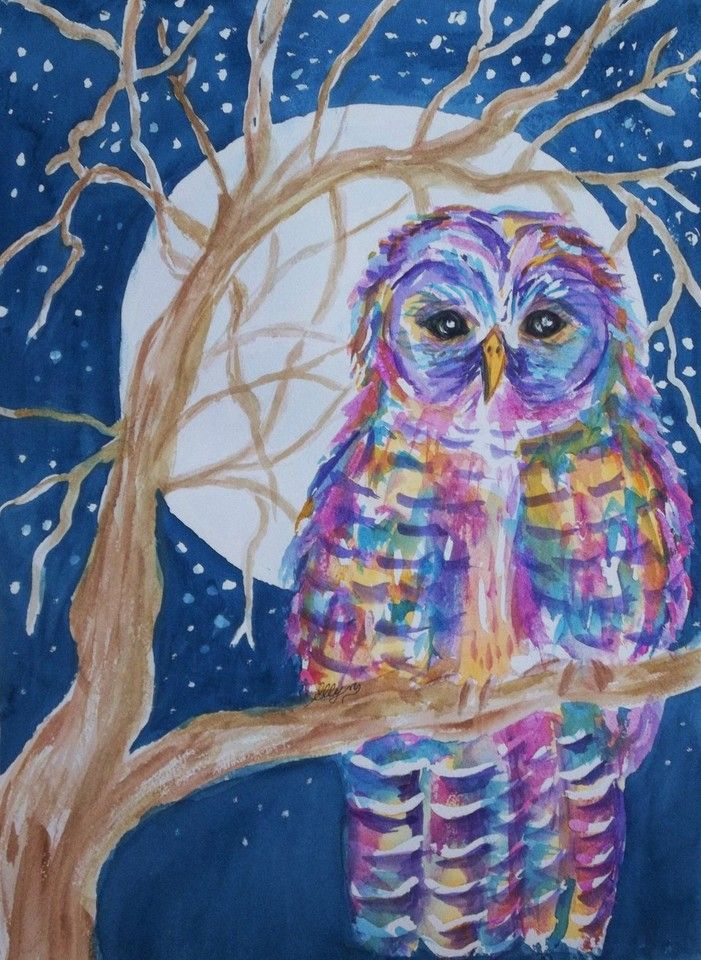 Barred Owl - Tie Dyed by Ellen Levinson | Crated