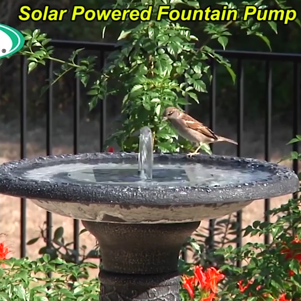Last promotion-60% OFF-Solar Powered Fountain Pump