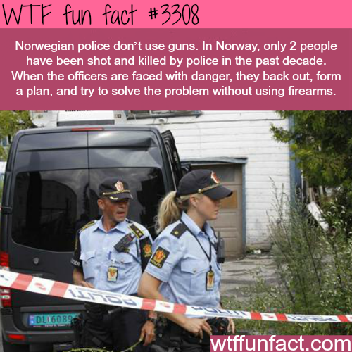 Norwegian police - WTF fun facts