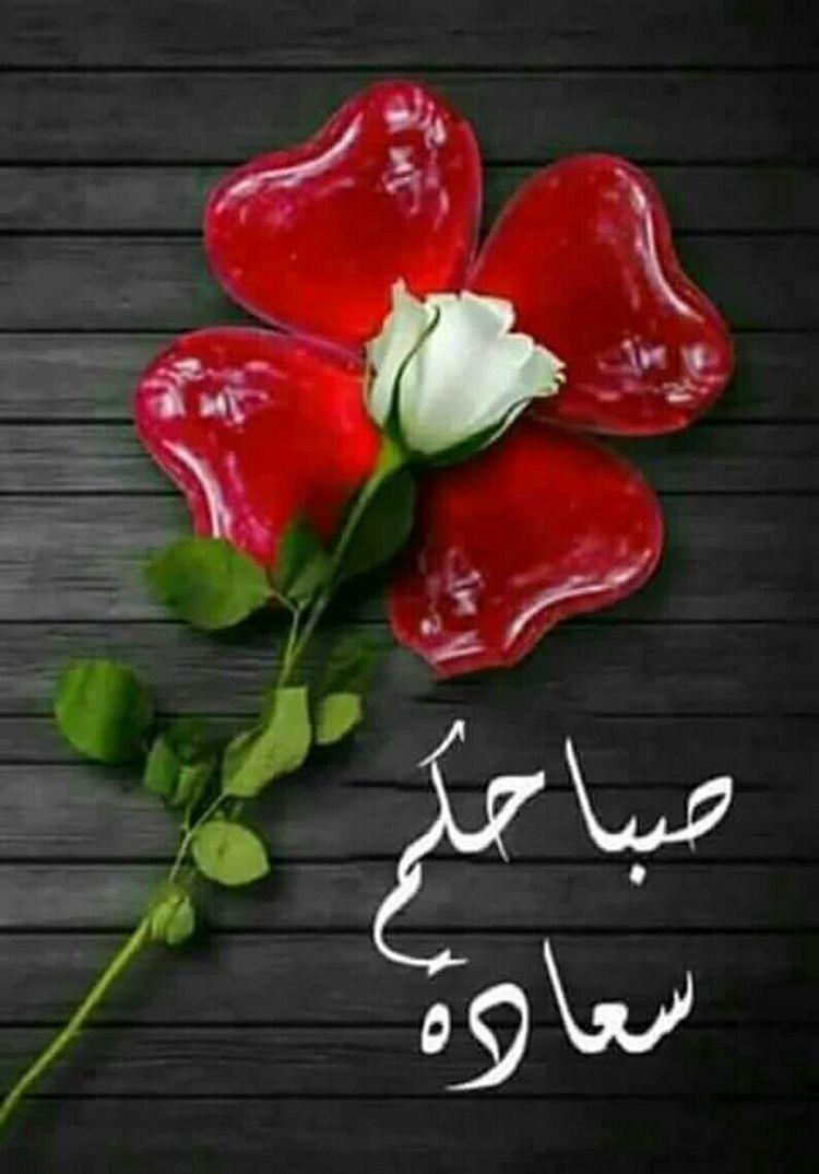 Pin By Jouria Warda On صباح الخير Good Morning Good Morning Gif Morning Greeting Flower Aesthetic