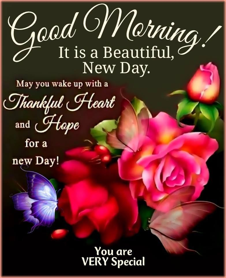 It Is A Beautiful New Day Morning Good Morning Good Morning