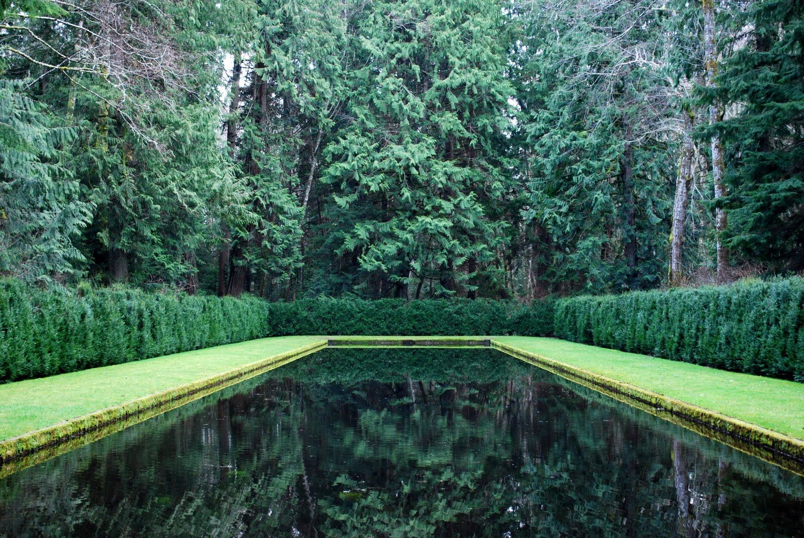 The Reflective Garden with its magnificent dark pool filled with natural groundwater. It was built in 1970 with some advice from Landscape Architect Thomas Church.
