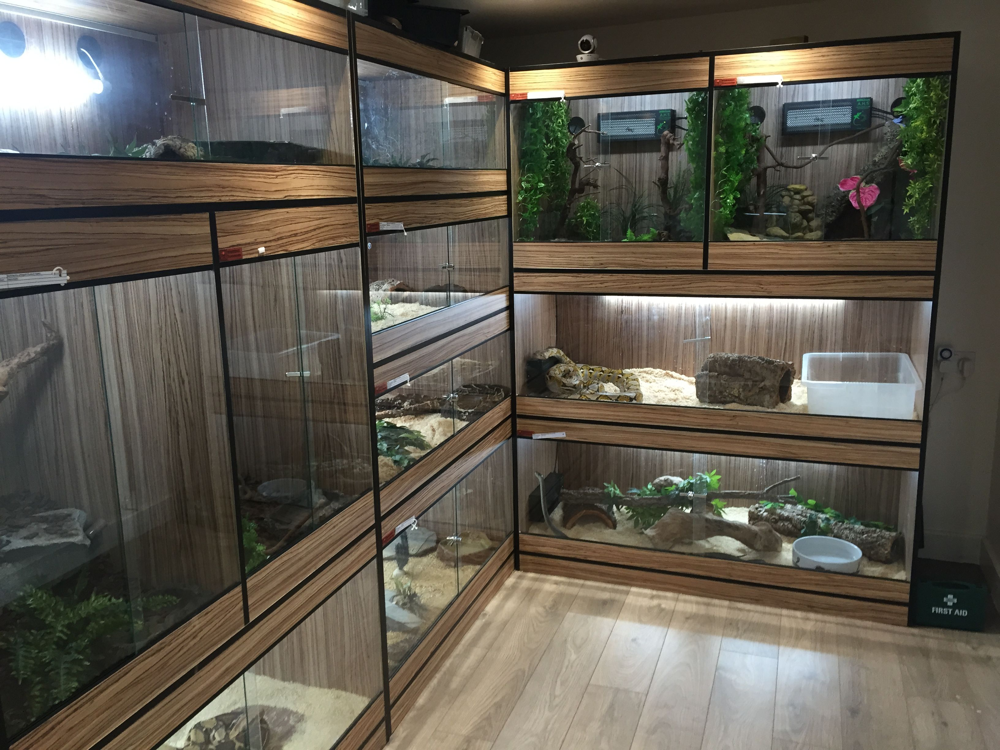 Animalroom herp room with fridge  | Reptiles and stuff