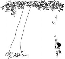 Shel Silverstein Illustrations The Giving Tree Google Search