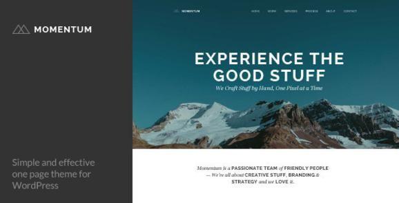 Best One Page WordPress Themes - Momentum