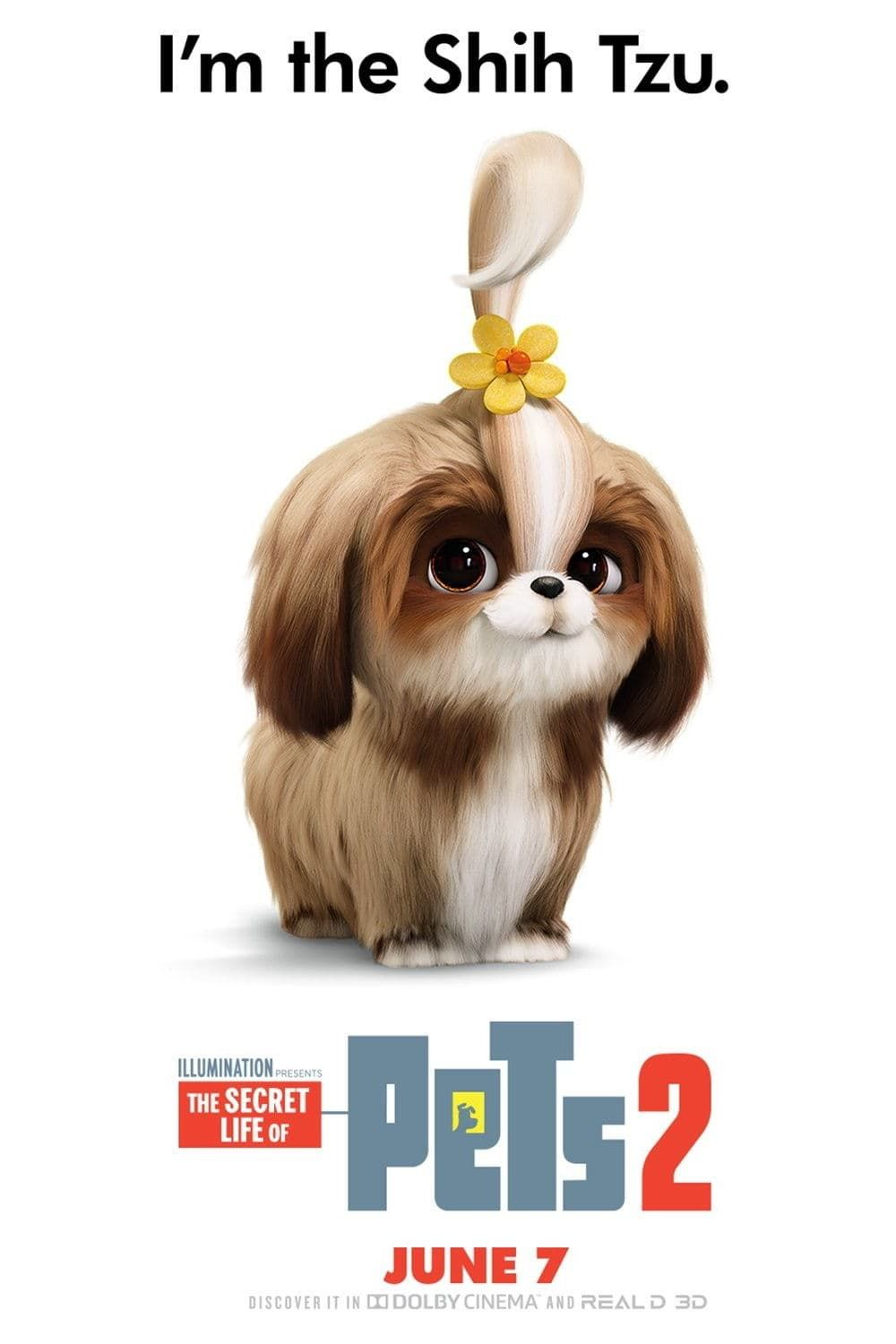 Watch The Secret Life Of Pets 2 Full Movie 2019 Online Free