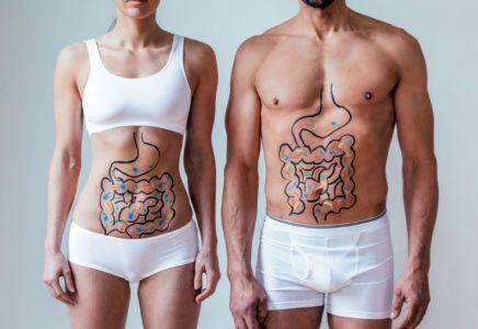 Probiyotik Nedir Ne İşe Yarar Probiyotik Besinler ve Faydaları Nelerdir