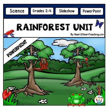 rainforest powerpoint amazon rainforest students and learning