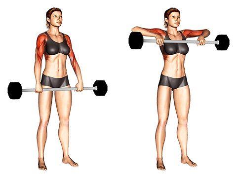Langhantel Übungen Frauen: Top 6 (Bilder + Videos)