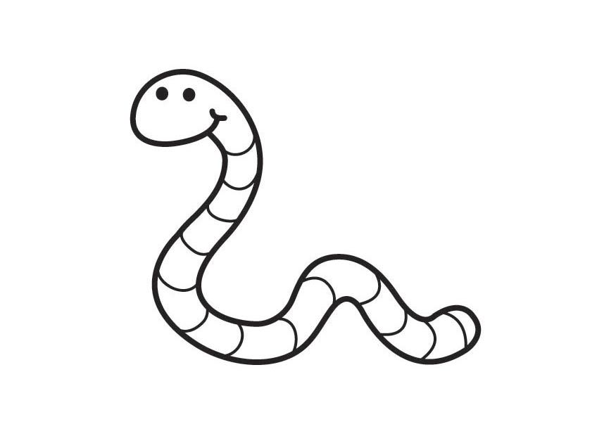 worm coloring pages for preschool - photo#1