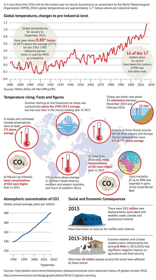 Top Online News Infographics Global warming and its consequences