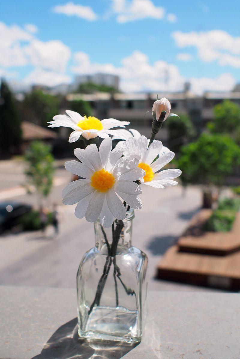 Daisy 2 no signature paper crafts pinterest symbols flower how to make paper daisies izmirmasajfo