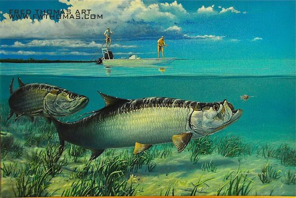 tarpon fish art google search fish pinterest